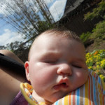 Wordless Wednesday: The Effects of Babywearing