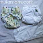Summer Fluffin' Review: Mother-ease Sandy's System fitted & cover