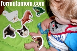 Teach My Baby kit animal puzzles