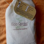 Cloth Diaper Review: Eco Sprout Detergent