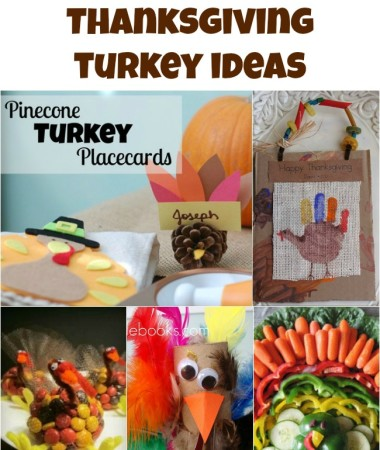 8 Thanksgiving Turkey Ideas