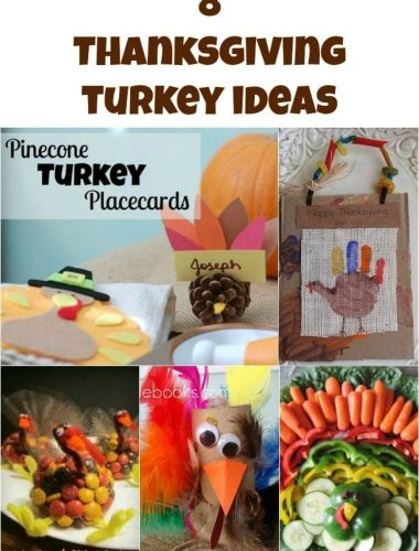 8 Thanksgiving Turkey Ideas