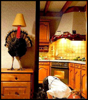Funny Thanksgiving Photo – Now Where Did That Turkey Go?