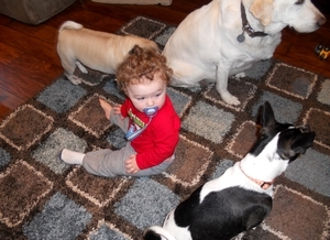 Mohawk Home Rug - Baby & Dog Approved!