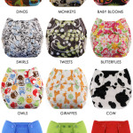 Cloth Diaper Review: Swaddlebees Simplex All-In-One