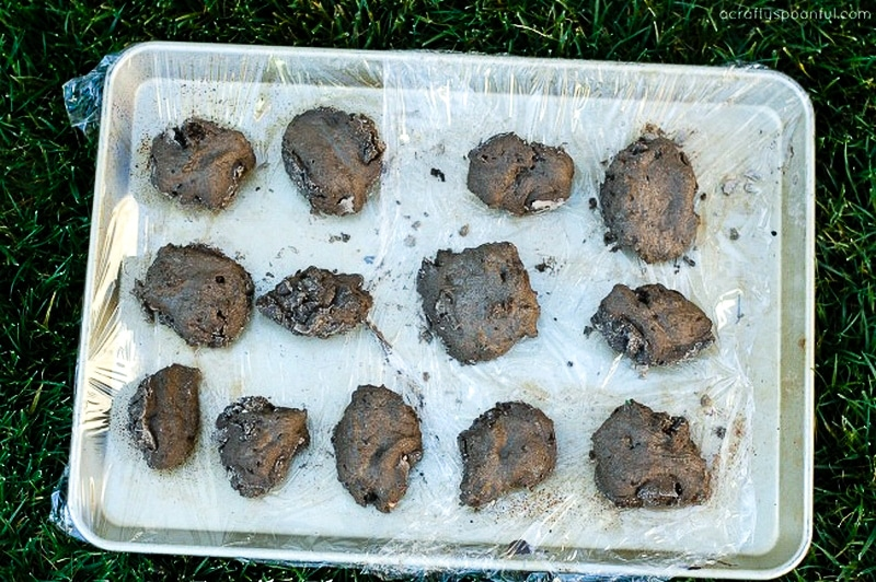 Drying DIY dinosaur fossils in the sun