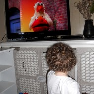 We're Having Big Elmo Fun! DVD Review