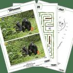 Go Wild with Disneynature's Chimpanzee!
