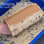 DIY Hanging Bird Feeder Craft