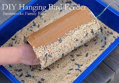 DIY Hanging Bird Feeder Craft