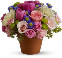 Teleflora flowers for Mother's Day