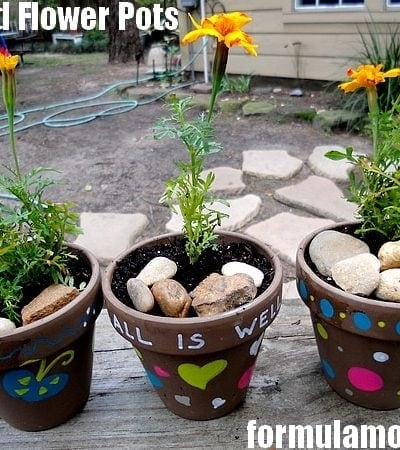 Painted Flower Pots Craft #ExpressYourself