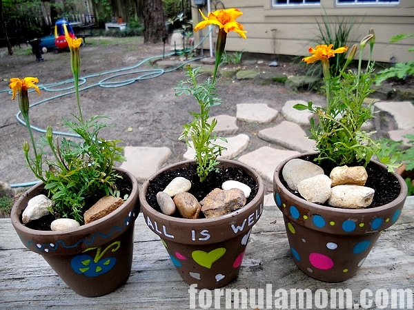 DIY Painted Flower Pot Craft