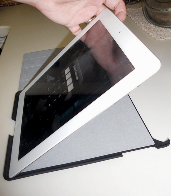 Pong iPad Case Review