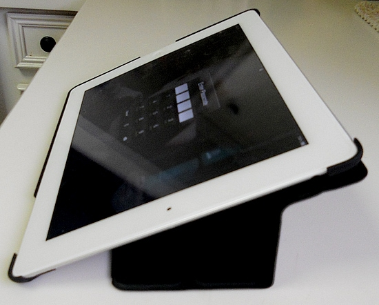 iPad Case by Pong