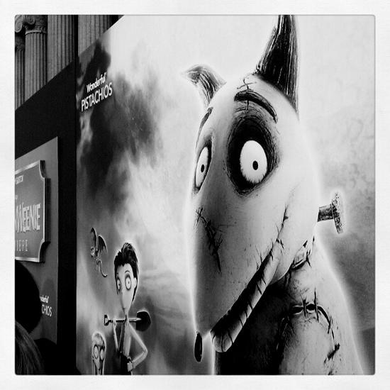 Sparky at Frankenweenie Premiere #DisneyMoviesEvent