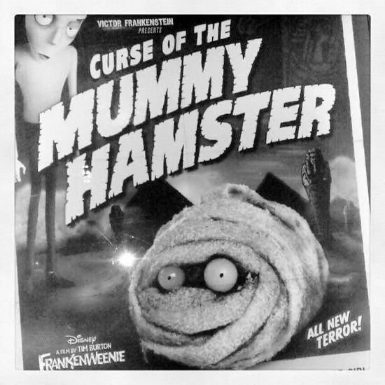 Mummy Hamster #DisneyMoviesEvent