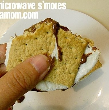 Easy Microwave Smores with Hershey's Camp Bondfire
