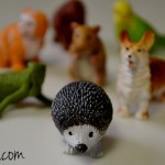 Realistic Animal Toys in Toobs from Safari Ltd