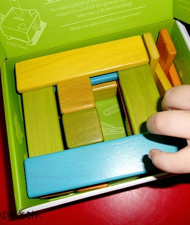 Tegu Blocks Reinvented