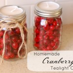 Homemade Cranberry Candles