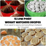 15 Low Point Weight Watchers Recipes