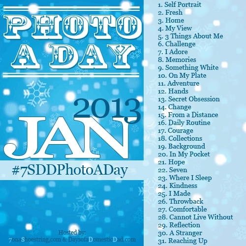 January Photo a Day Challenge #7SDDPhotoaDay