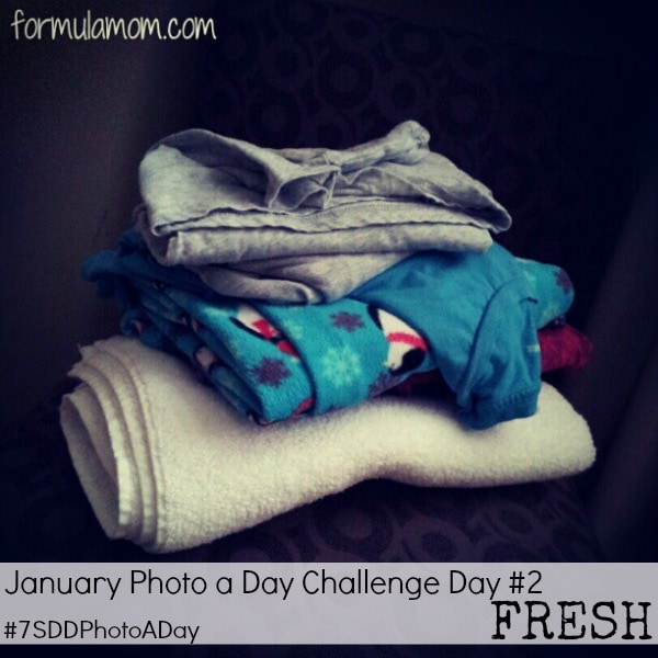 January Photo a Day Challenge - Day 2 FRESH #7SDDPhotoaDay #photoaday