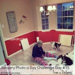 January Photo A Day Challenge Day 15 #7SDDphotoaday
