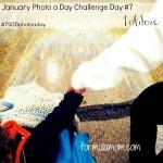 January Photo A Day Challenge Day 7 #7SDDphotoaday