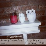 January Photo A Day Challenge Day 9 #7SDDphotoaday