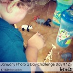 January Photo A Day Challenge Day 12 #7SDDphotoaday