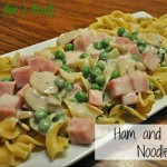 Ham and Swiss Noodles Recipe