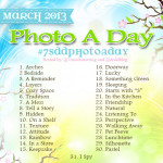 March Photo a Day Challenge 2013 #7SDDphotoaday