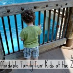 Affordable Family Fun: Kids At The Zoo