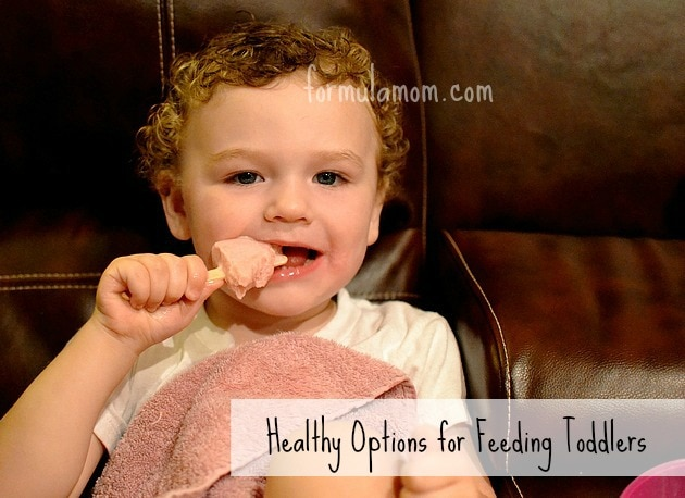 Healthy Options for Feeding Toddlers