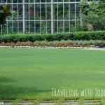 Traveling with Toddlers Tips