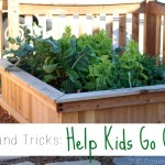Tips and Tricks to Help Kids Go Green #PlantingWithPablo