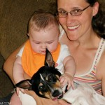 How We Handled the Dog and New Baby