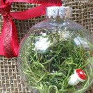 12 Days of DIY Christmas Ornaments: Fairy Garden Ornament