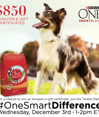 #OneSmartDifference Twitter Party 12/3 #TwitterParty #cbias #ad