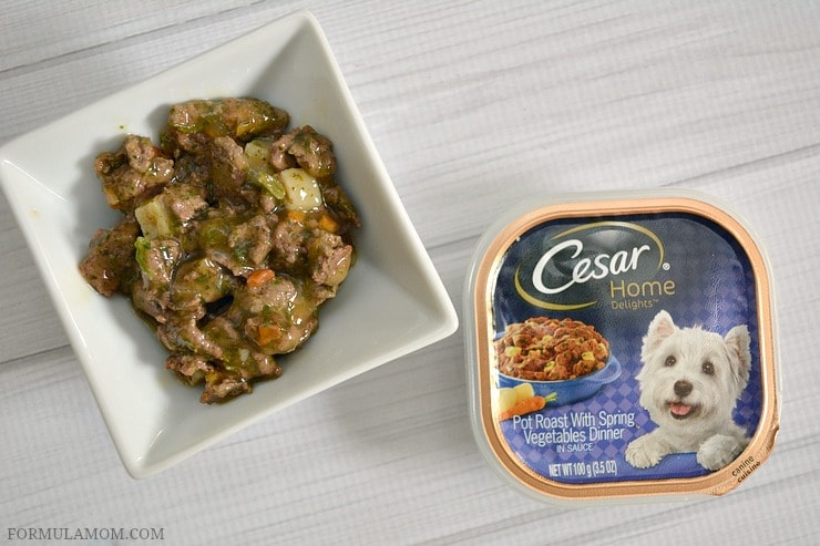 Balancing Life with Kids and Dogs with Cesar® home delights™