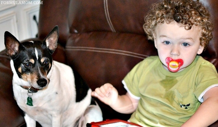 Balancing Life with Kids and Dogs