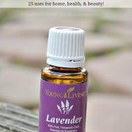 25 Lavender Essential Oil Uses