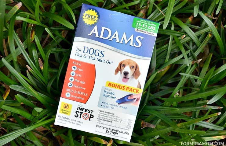Conquering flea season with help from Adams™ for Dogs Flea & Tick Spot On® with Free Applicator