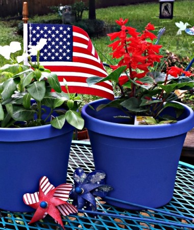 MilkLife Challenge - Making patriotic potted plants