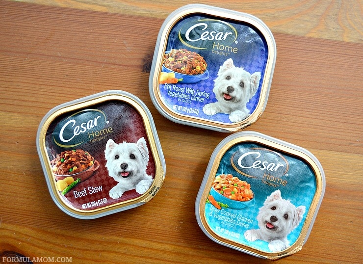 Make meal time special with food your dog loves and show your dog you love him! #CesarHomeDelights