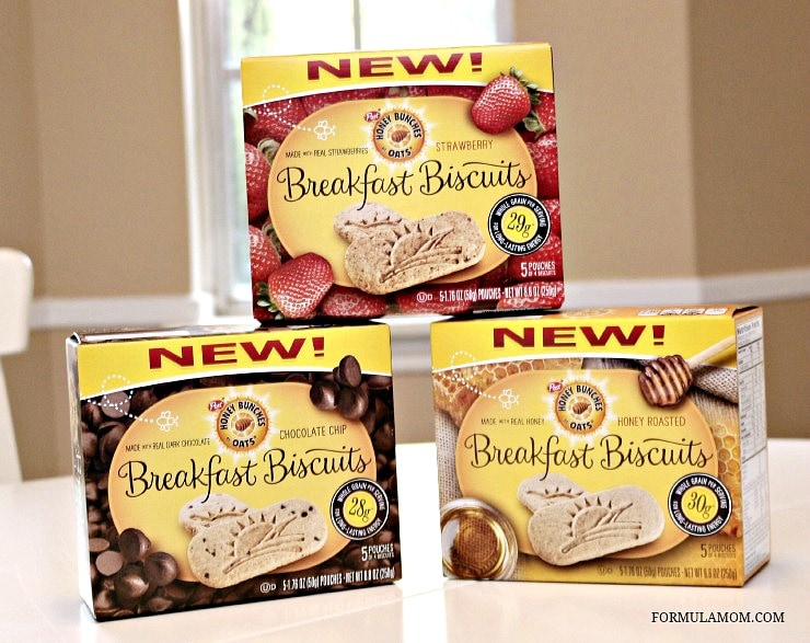 Breakfast Biscuits are perfect as a snack on a family road trip!