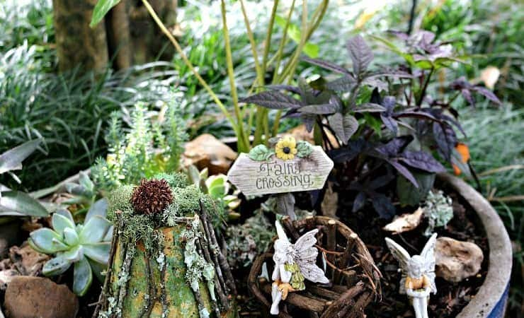 Fairy Garden Tips For Kids