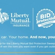 2nd Chance to Win on Ebay with Liberty Mutual Insurance